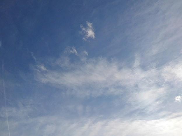 薄い雲もある青空(2月10日)