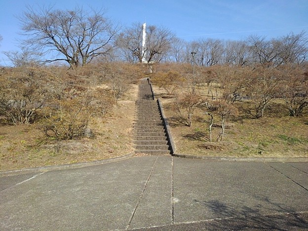 Photos: 長峰公園の丘の道と上り階段(2月14日)