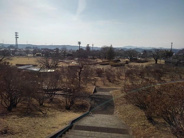 Photos: 長峰公園の丘の下り階段の景色(2月14日)