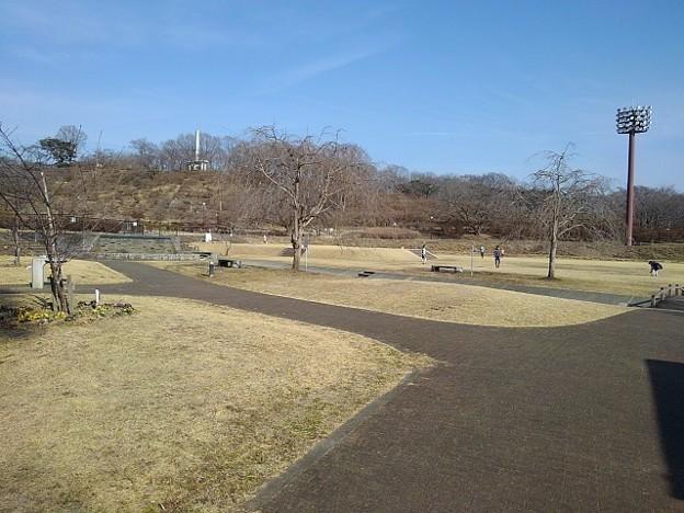 長峰公園の広場の道(2月14日)