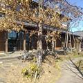 Photos: エコモデルハウス(2月28日)