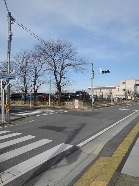 調剤薬局の前の道路(2月12日)【再アップ】