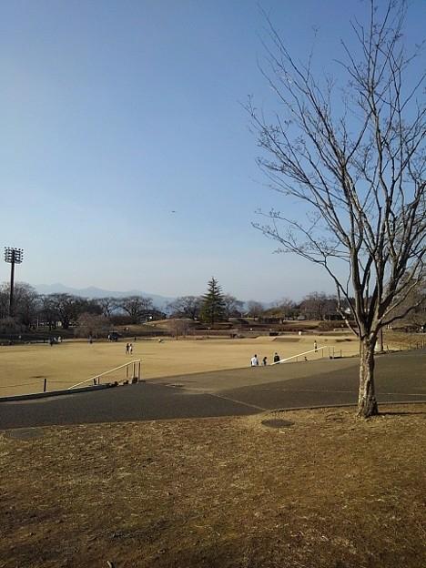 長峰公園の広場(2月14日)