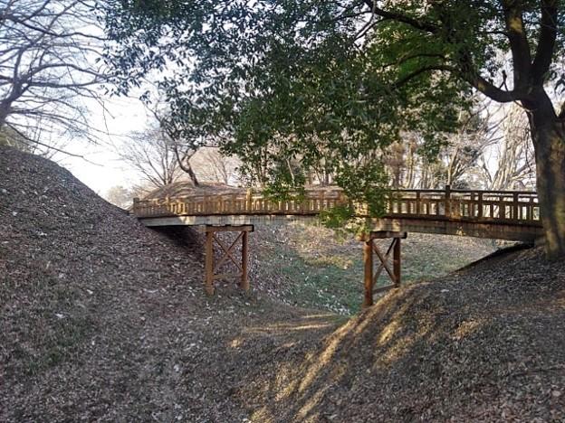 ゆうゆうパークの丘の木製の陸橋(2月20日)