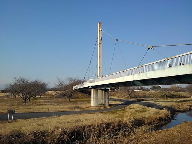 ゆうゆうパークの陸橋(2月20日)