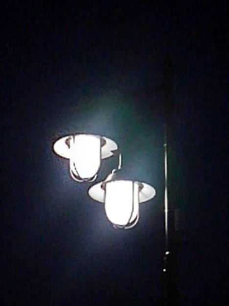 街灯(2月20日)