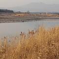 ゆうゆうパークの近くの川(2月20日)