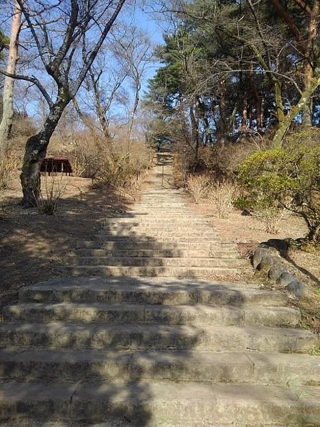 烏ヶ森公園の丘の階段(2月21日)