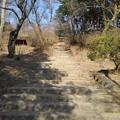 Photos: 烏ヶ森公園の丘の階段(2月21日)