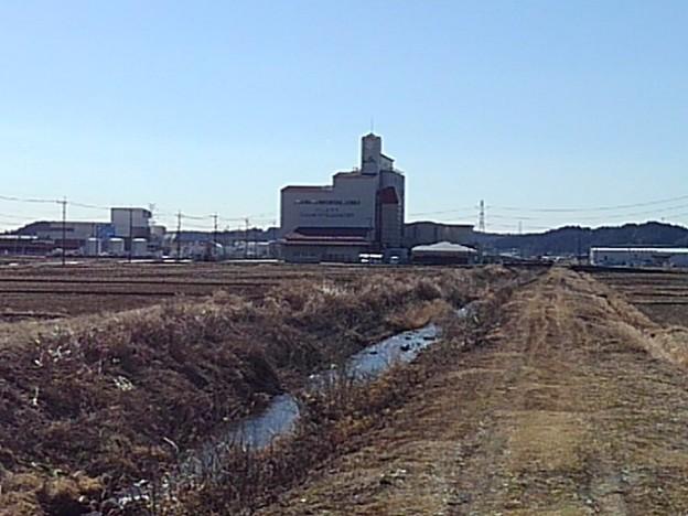 田園を流れる小川景色(2月23日)