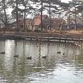 Photos: 烏ヶ森公園の池の橋(2月21日)