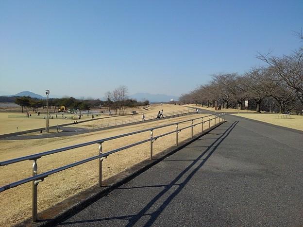 ゆうゆうパークの入り口あたりの道からの景色(2月20日)