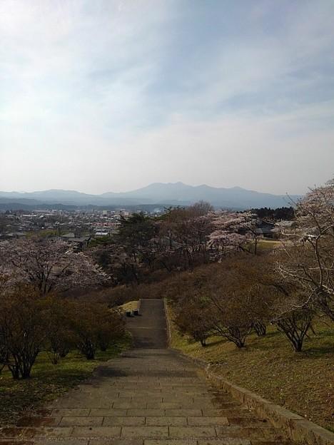 丘の上からの景色(3月27日)