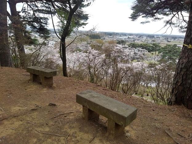 烏ヶ森公園の丘の上からの景色(4月3日)