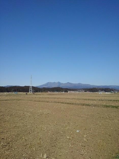 田園の奥の山(3月11日)