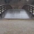 正面のともなり橋(3月21日)
