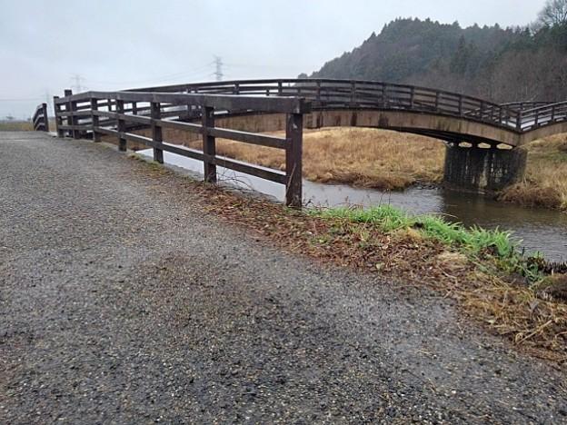 側面のともなり橋(3月21日)