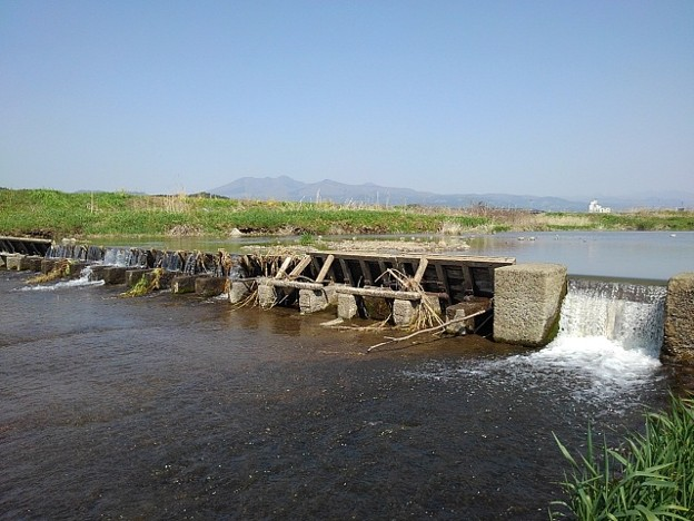 川の堰(4月20日)
