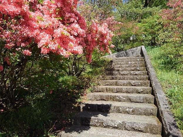 長峰公園の丘の階段と道(4月18日)