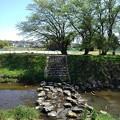 飛び石のある川(4月27日)