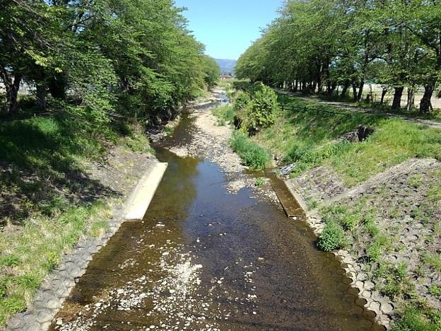 緑に挟まれた川(4月27日)