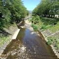 Photos: 緑に挟まれた川(4月27日)