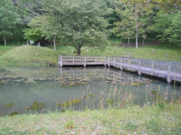川崎城跡公園の池(5月1日)
