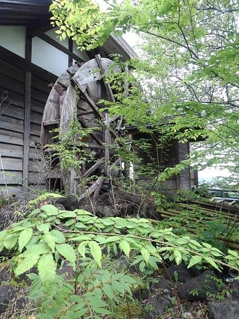 川崎城跡公園の水車(5月1日)
