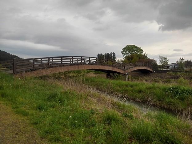川崎城跡公園の橋(5月1日)