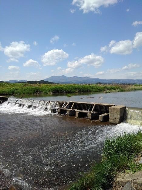 川の堰(5月3日)