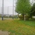 公園の入口あたり(5月5日)