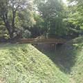 ゆうゆうパークの丘の陸橋(5月4日)