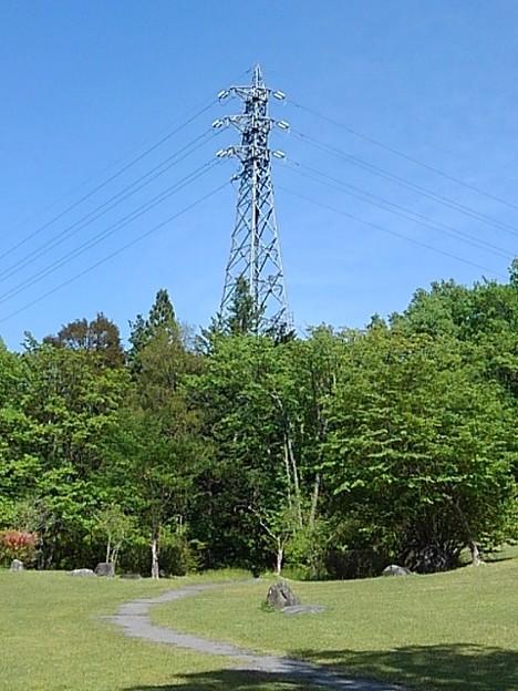 那須野が原公園の鉄塔(5月6日)