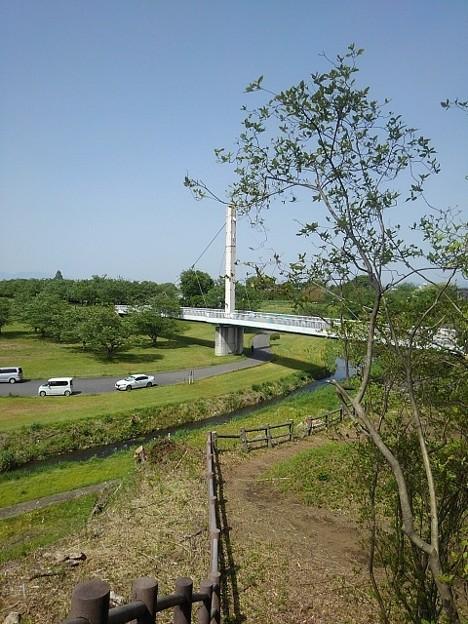 ゆうゆうパークの丘から見えた陸橋(5月4日)