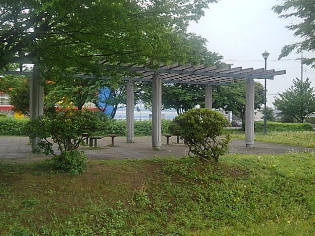 公園の休憩所(5月5日)