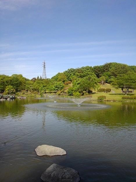 那須野が原公園の池の見晴らし(5月6日)