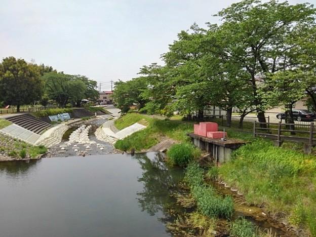 橋の上から見えた川(5月14日)