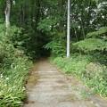 長峰公園の丘の階段(5月9日)