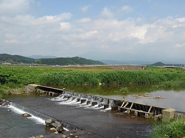 川の堰(5月29日)