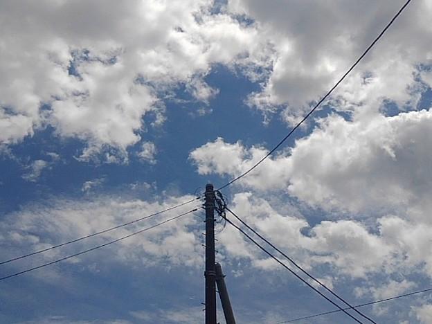 電柱と空(5月25日)