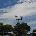 Photos: 街灯と街路樹と空(5月25日)