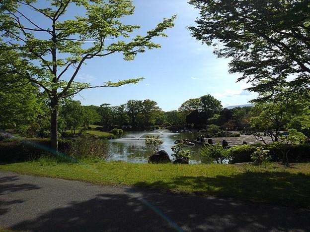 道から見えた那須野が原公園の池(5月6日)