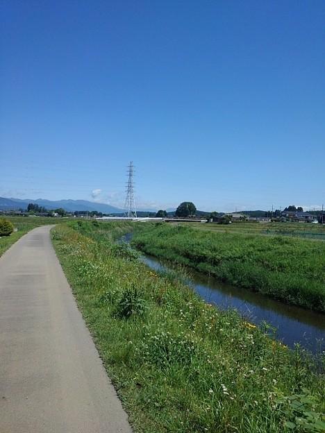 Photos: 川沿いの道(5月28日)