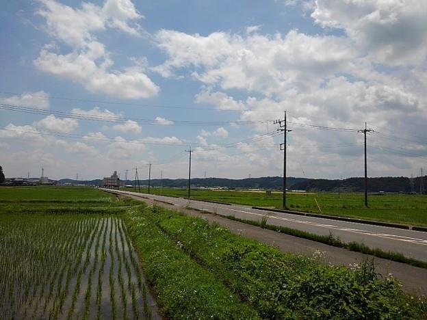 田園地帯を通る道路(5月31日)