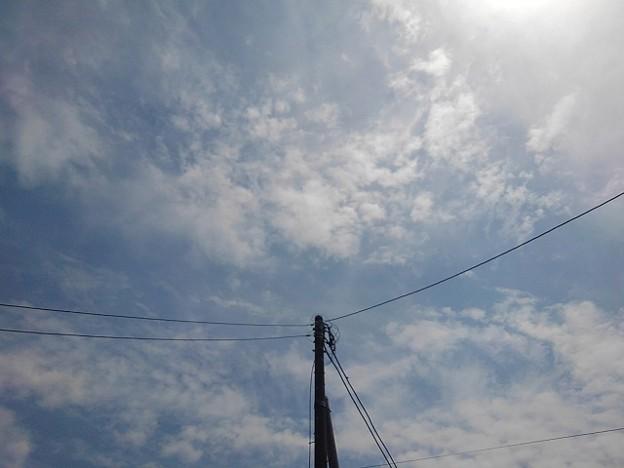 電柱と鱗雲(6月7日)