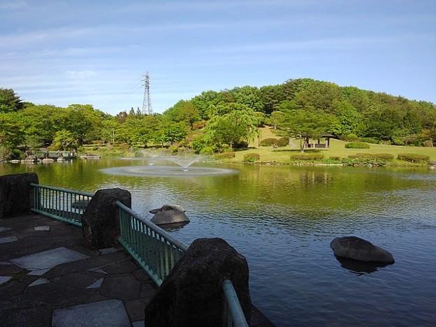 那須野が原公園の池の絶景(5月6日)