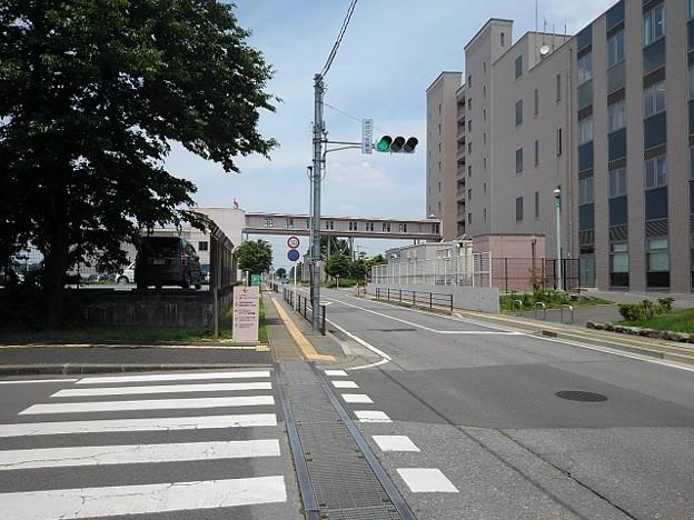 調剤薬局前の横断歩道(6月11日)