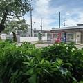 Photos: 烏ヶ森公園の自動販売機(6月20日)