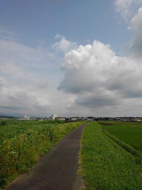 奥に大きな雲が見える川沿いの道(6月22日)