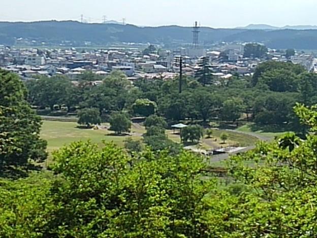 高い場所から見えた公園の広場(6月13日)
